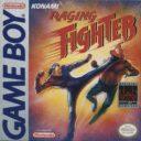 Raging Fighter